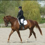 The Saddle Doctor - Lesley McGill - Customising your saddle to your horse