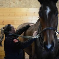 Lesley McGill | The Saddle Doctor