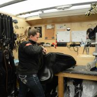 Custom Saddle Fitting | The Saddle Doctor